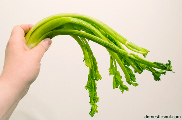 How To Make Wilted Celery Crisp Again from domesticsoul.com