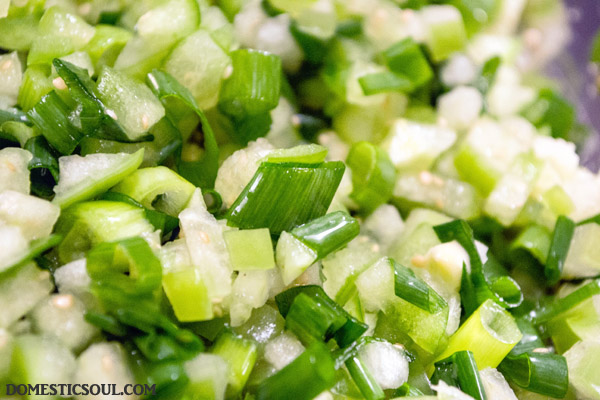 Lacto Fermented Tomatillo Salsa (Salsa Verde)
